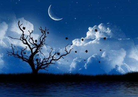 描写夜晚的优美句子 描写夜晚的句子唯美