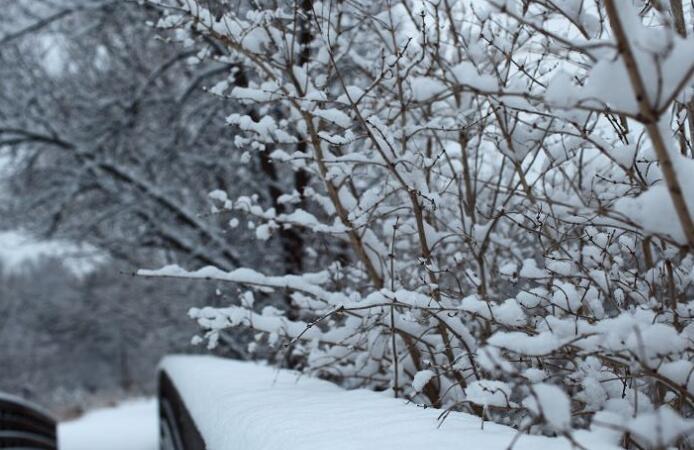 描写下雪的古风句子 下雪的唯美短句
