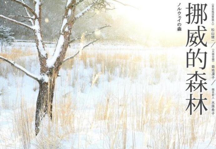 《挪威的森林》好句摘抄《挪威的森林》有哲理的句子