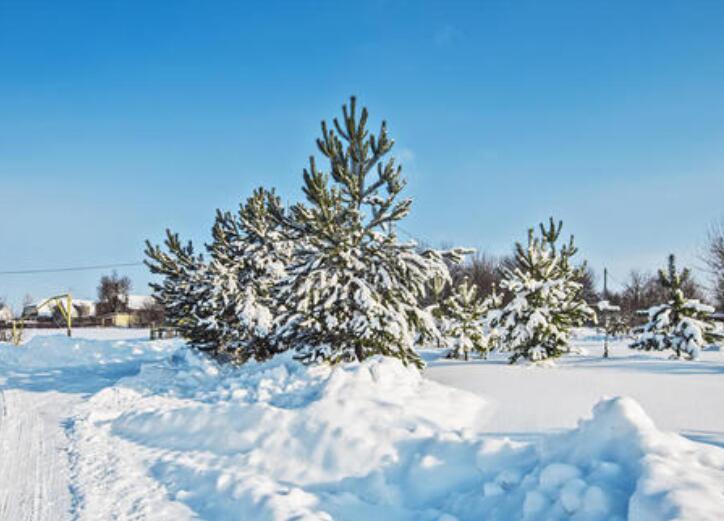 关于冬天古风句子 带有冬天景色的诗句