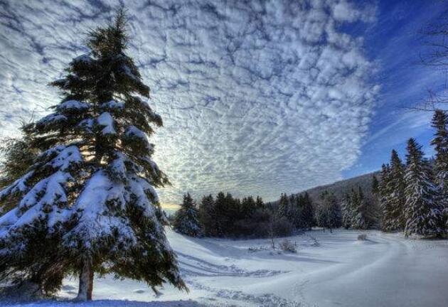 冬天的哲理句子 有关冬天的人生感悟