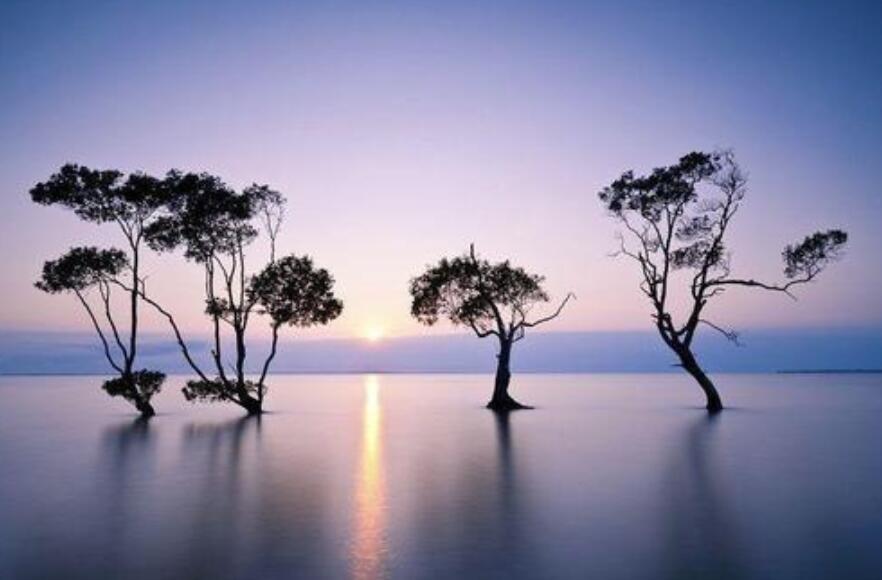 祈福心静的句子 拜佛求心静的语录