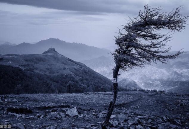 刮大风心烦的句子 刮大风天气的心情语录
