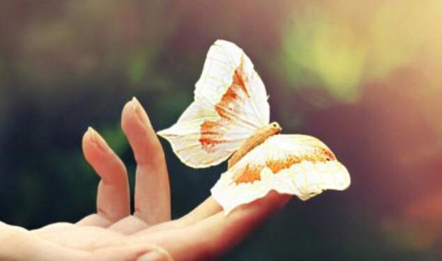 关于善的优美句子 关于善良的唯美句子