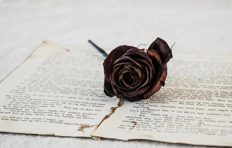 爱而不得的古风唯美句子 虐心流泪的唯美语录
