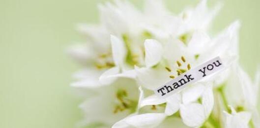 关于感恩的优美句子 感恩对我好的人的句子