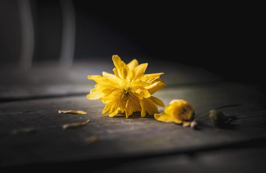 让人心疼到哭的伤感句子 让人心痛的伤感语录