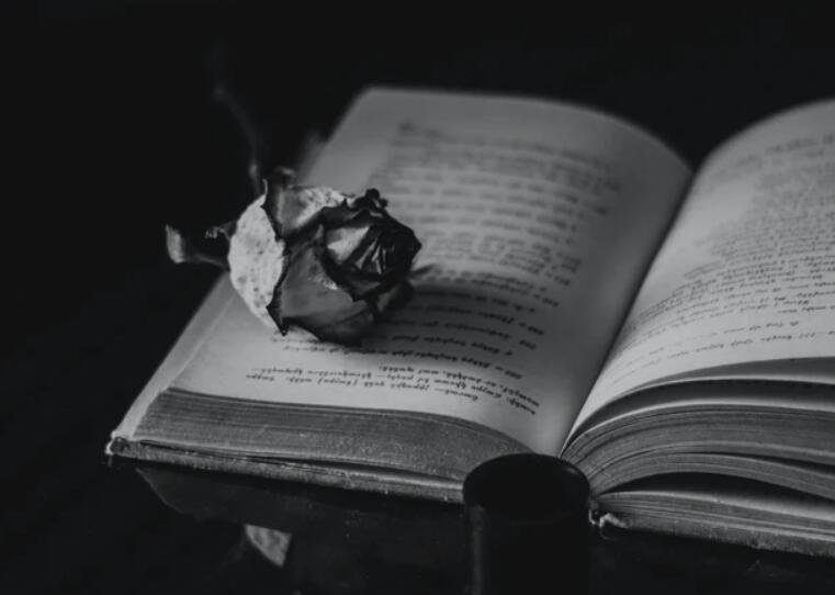 回忆往事的感慨句子 怀念过去的唯美语录