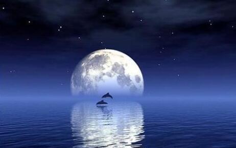描写月亮的古诗 关于月亮的优美古诗