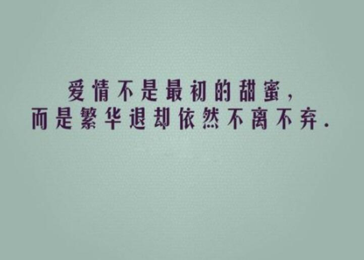 嘲讽现实爱情的句子