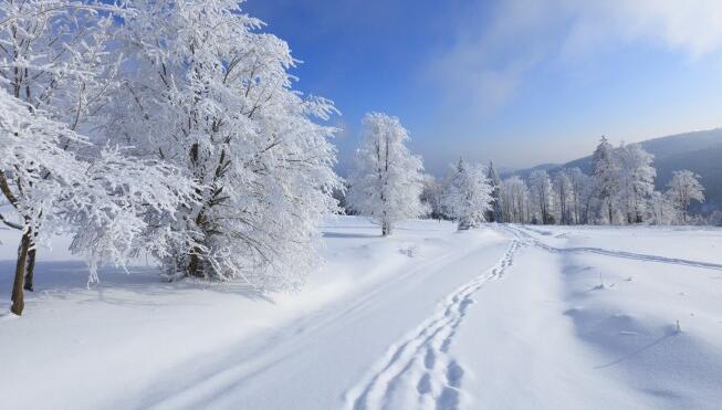 大雪纷飞造句 大雪纷飞的优美句子