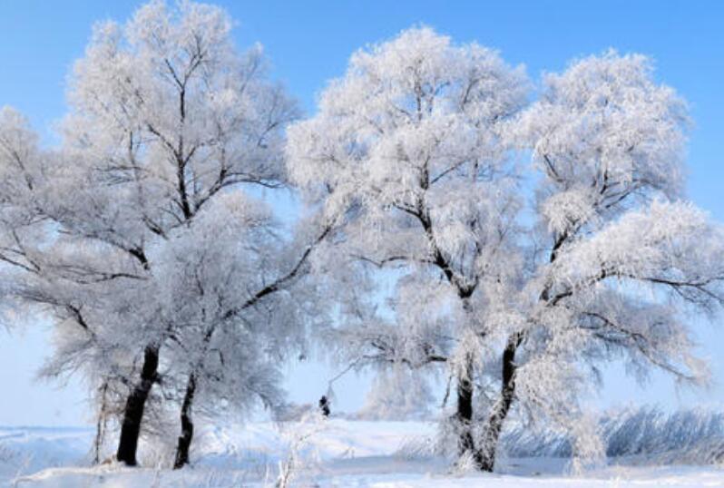 寒冬凄凉的唯美句子