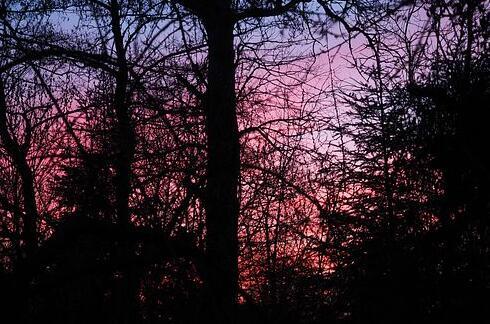 一句话的简单早安说说 早安让人看了舒服的句子