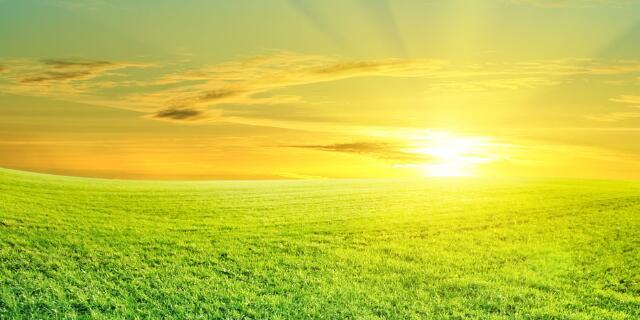 关于太阳的优美句子 描写太阳优美句子