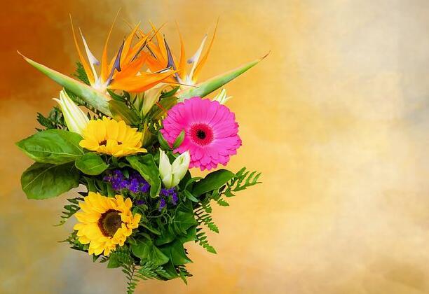 喜欢花的句子 形容花的唯美短句