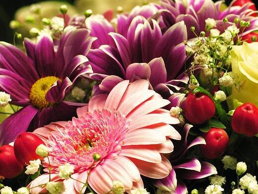 关于花的伤感句子 关于花的伤感朋友圈