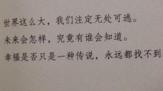 优美抒情的句子摘抄 意境优美的句子摘抄