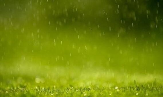 形容雨景的优美句子 描写雨景的优美句段