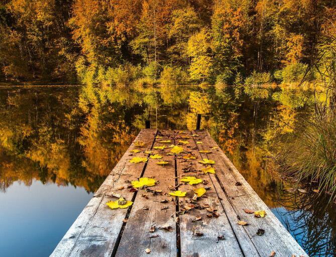 描写秋天的凄凉句子 描写秋天的伤感寂寞