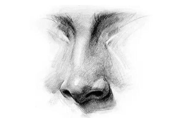 描写鼻子的优美句子 描写鼻子的段落短句