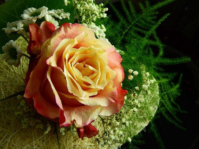 婚姻的祝福语 祝福朋友结婚的话语