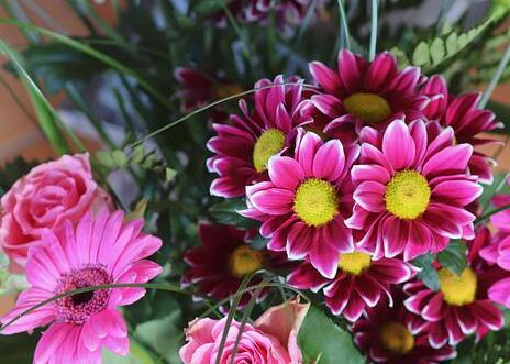 描写花的句子 写各种花的优美句子
