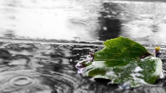 下雨天的励志心情经典句子