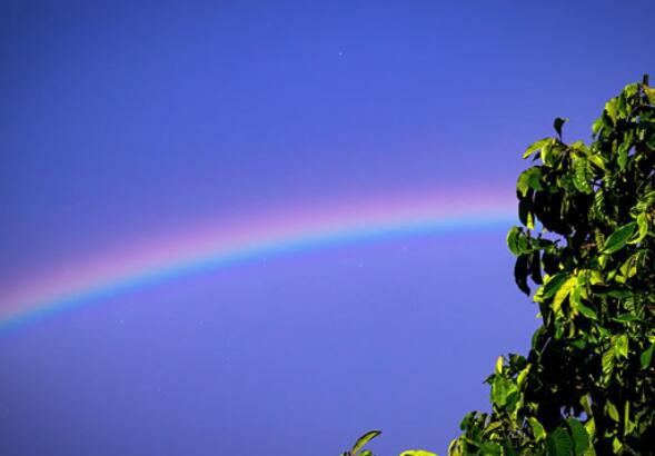 雨后彩虹的优美句子 描写雨后彩虹的句子