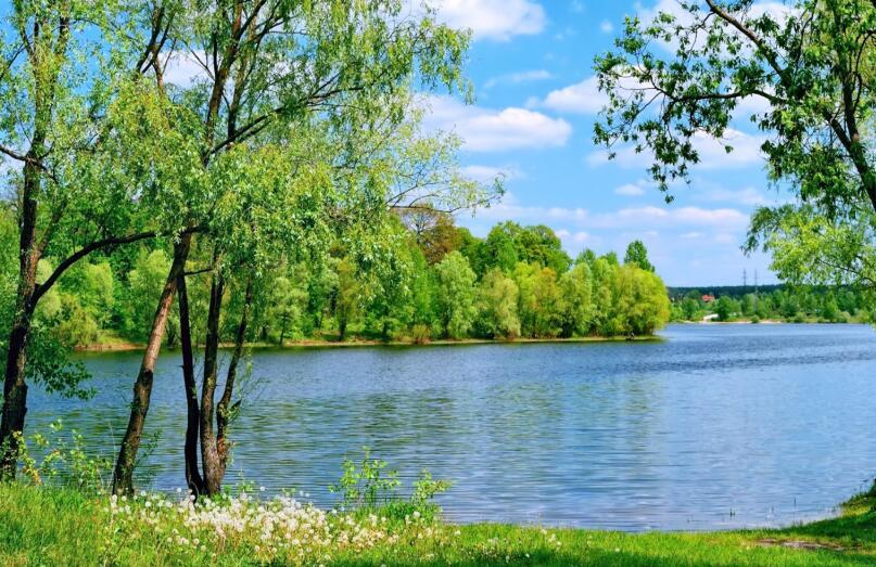 描写夏天景色的优美句子 描写夏天美丽景色的段话