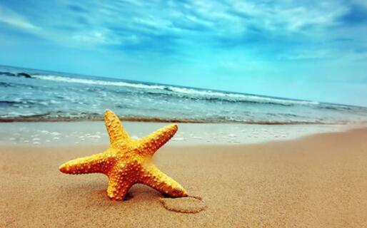 关于夏天优美的句子 描写美好夏日的句子
