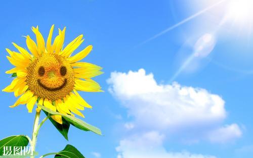 充满阳光正能量的群名 阳光励志的群名称