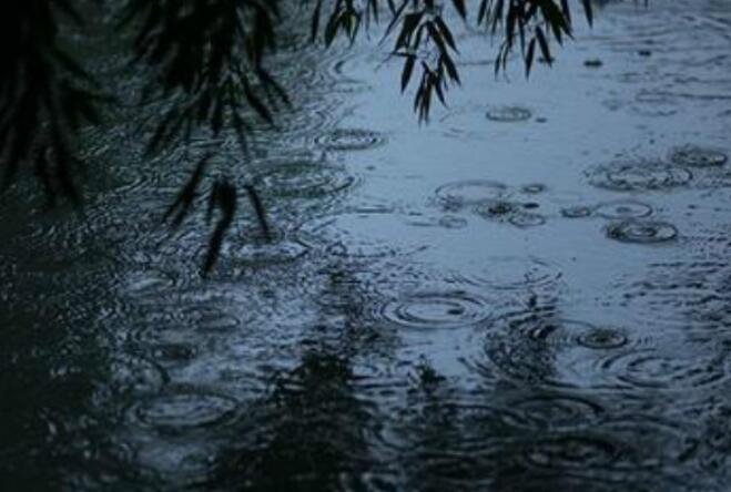 描写细雨的优美句子 描写细雨绵绵的句子