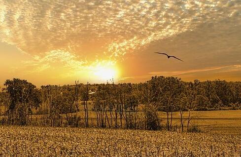 早安心语 早晨让人开心的暖心话