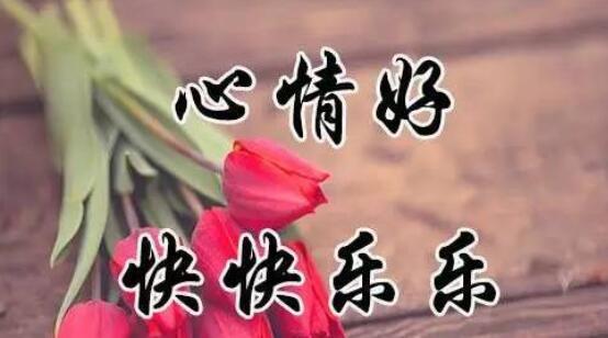 愿你快乐的句子 愿你每天都快乐的句子