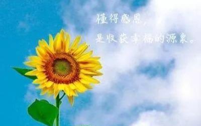 鼓励美好生活的句子 生活无限美好的句子