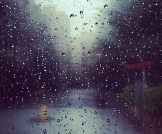 描写冬雨的优美句子 冬雨夜的优美句子