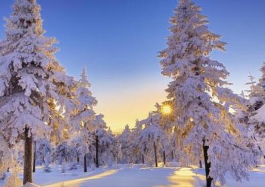 冬天问候短信 冬天问候暖心句子简短