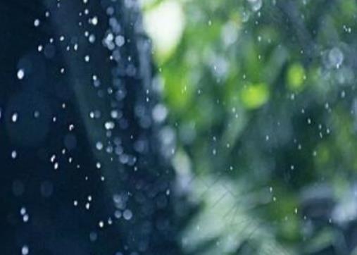 听风看雨的诗句