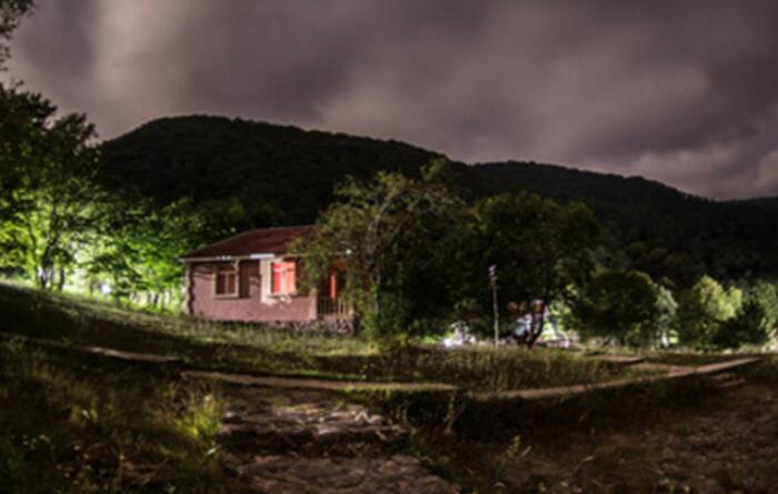 农村夜生活的经典语录