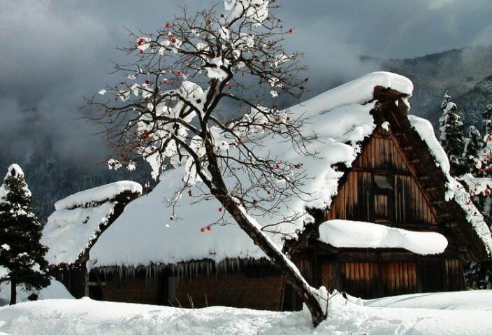 描写冬天美景的段落摘抄