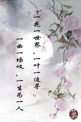 淡雅唯美古风意境句子 求古韵,唯美,意境,古风句子