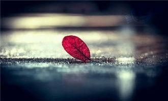 说透人心的句子 人心难测心凉透的句子