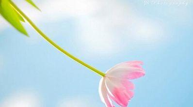 能改变你一生的十句话 女士必看:改变你一生的十句话,男士回避