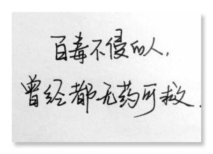 成熟现实的短句子 一些很现实的短句