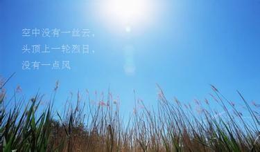 形容夏夜凉爽惬意的句子 描写夏夜宁静景色的好句
