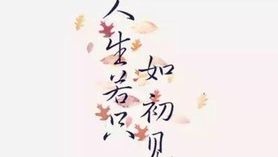 优美的唯美的句子短句 优美排比句