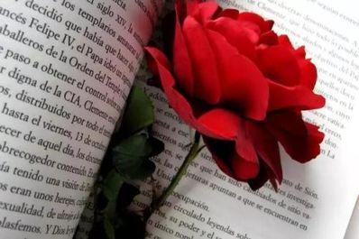心情好的句子 描写喜悦心情的好句子