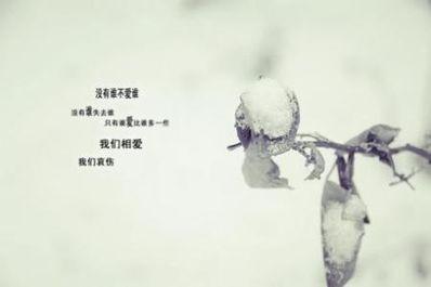 形容失望和心凉的诗句