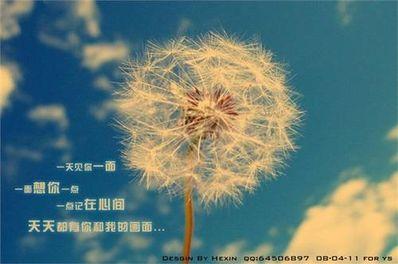 相伴一生的唯美诗句 形容简简单单确要相伴到老的诗句