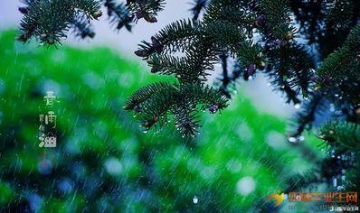 8月的雨唯美句子 关于下雨天的唯美句子
